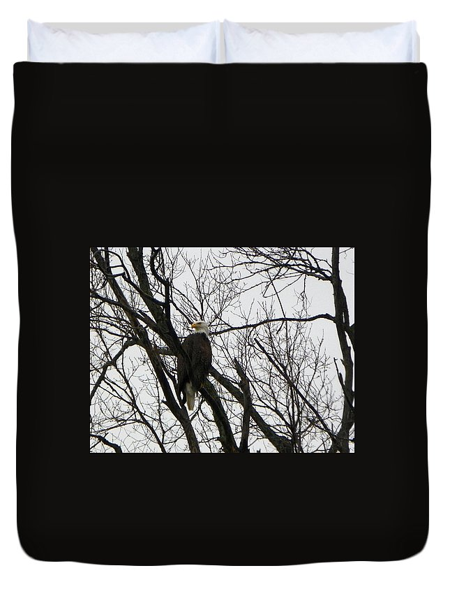 Eagle Duvet Cover featuring the photograph Eagle On Old Dump Road by Tammy Miller