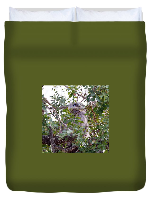 Eagle Owl Chick Duvet Cover featuring the photograph Eagle Owl Chick by Dave Whited