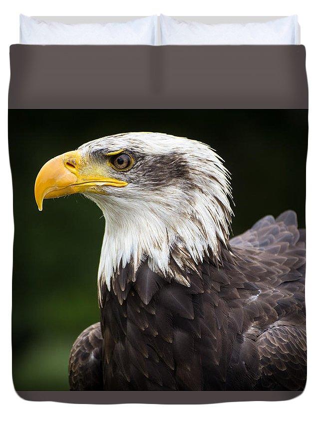 Eagle Duvet Cover featuring the photograph Eagle Portrait by Kyle Hillman