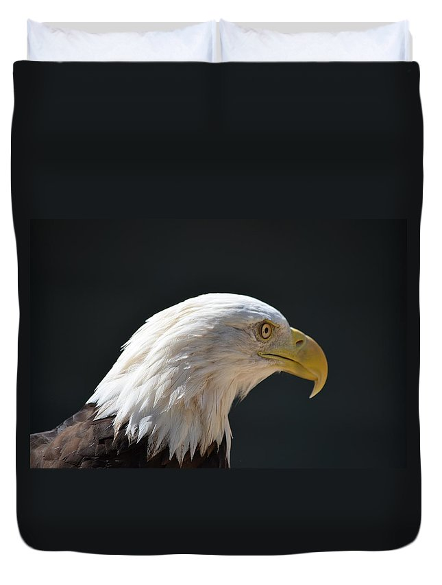 Eagle Duvet Cover featuring the photograph Eagle Profile by Barbara Matthews