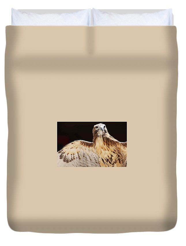 Eagle Duvet Cover featuring the photograph Eagle by Raquel Daniell