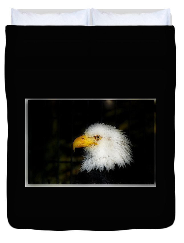 Eagle Duvet Cover featuring the photograph Eagle by Galeria Trompiz