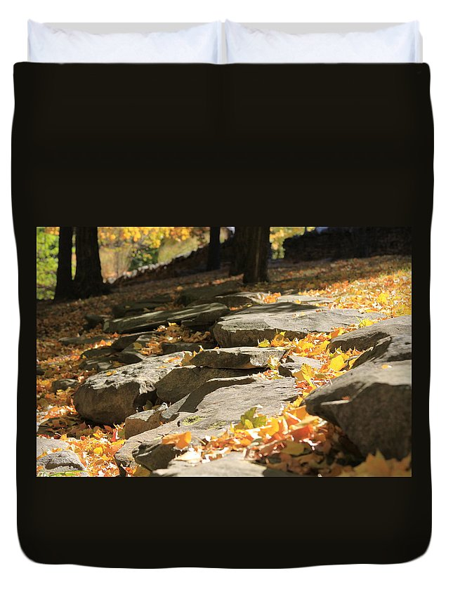 Autumn Duvet Cover featuring the photograph Early Autumn by Andrea Lynch