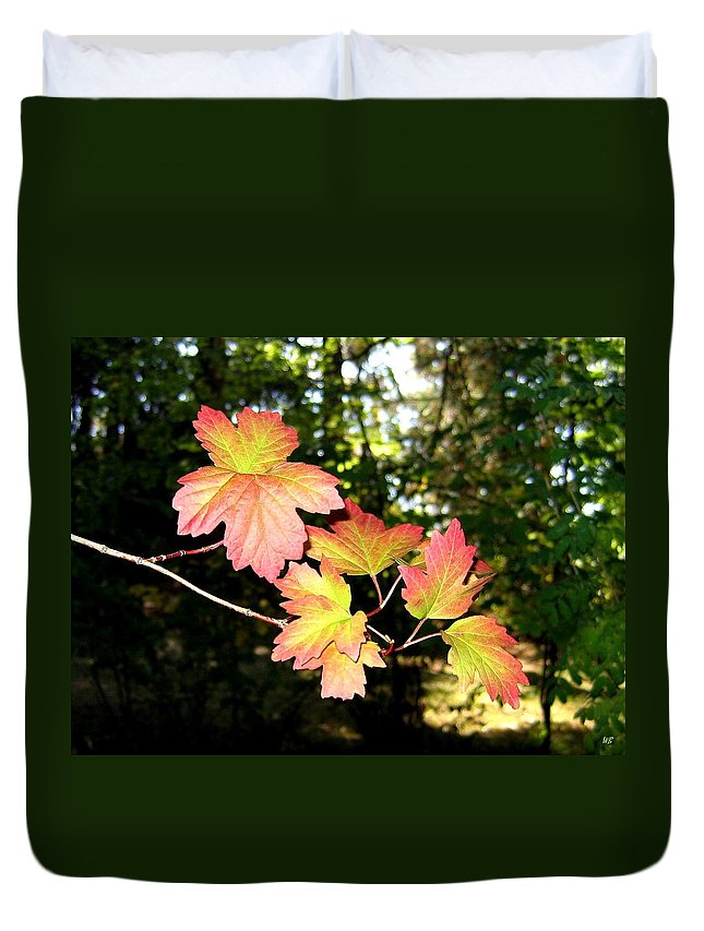 Autumn Duvet Cover featuring the photograph Early Days Of Autumn by Will Borden