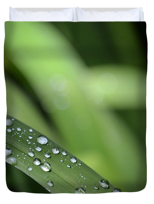 Grass Duvet Cover featuring the photograph Early Morning by Denise Jakob