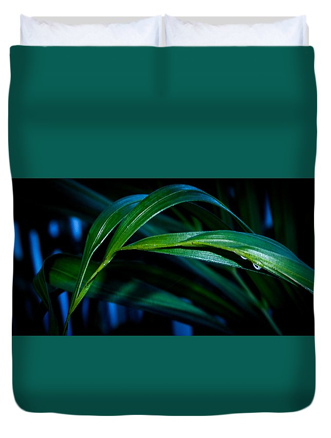 Art Duvet Cover featuring the photograph Early Morning Dew by Rosemary Smith