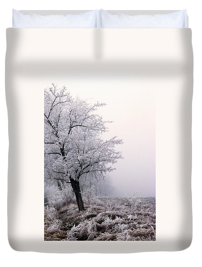Frost Duvet Cover featuring the photograph Early Morning Frost by Cliff Norton