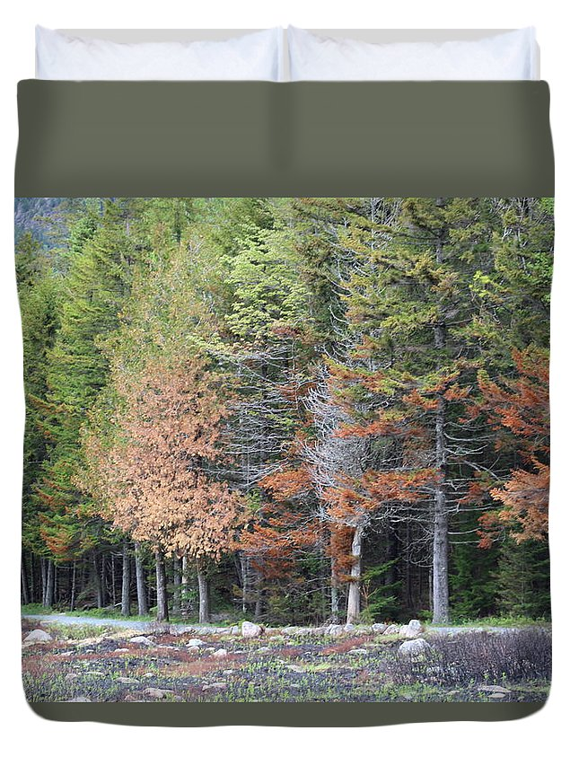 Landscape Duvet Cover featuring the photograph Early Spring by Lisa Wolstencroft