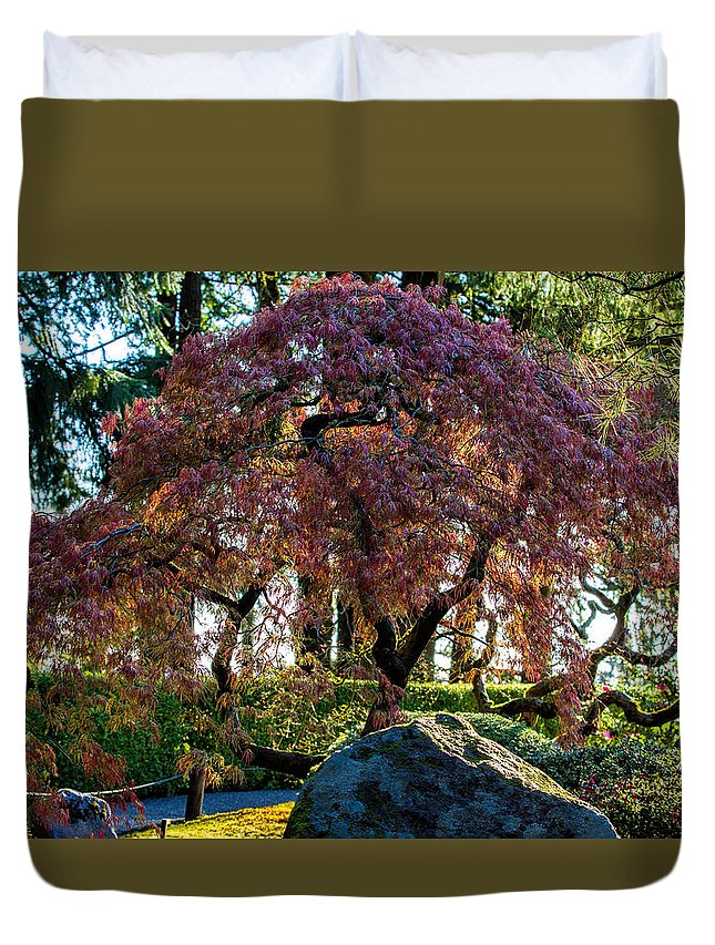 Portland Japanese Garden Duvet Cover featuring the photograph Early Sun by Mike Centioli