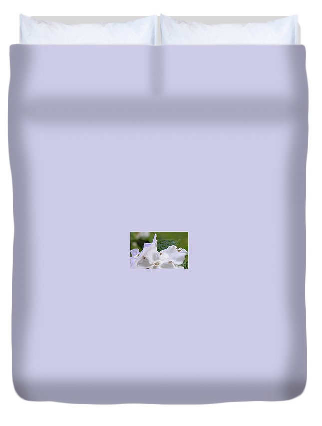 Flower Duvet Cover featuring the photograph Easter Surprise by Richard Rizzo
