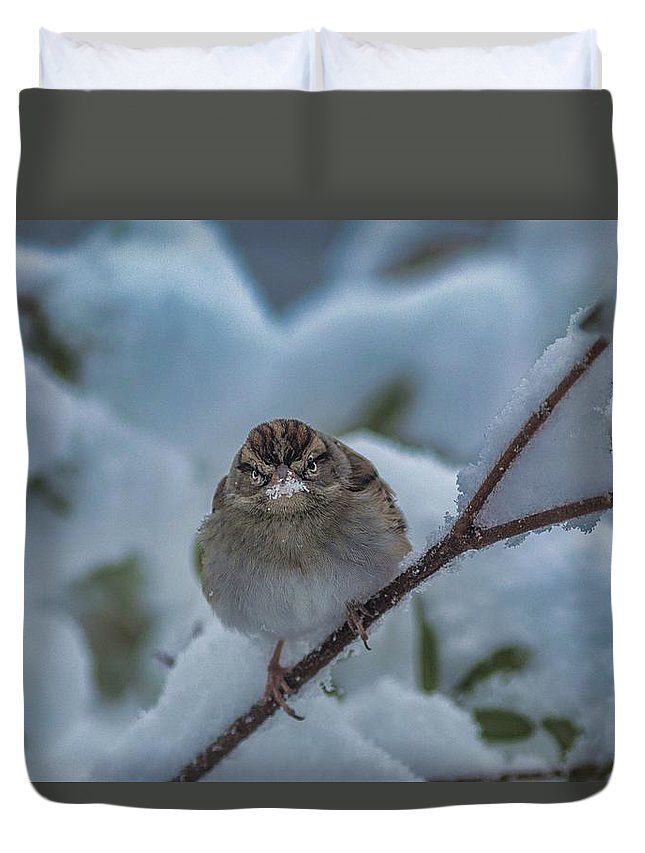 Snow Duvet Cover featuring the photograph Eating Snow by Cindi Poole
