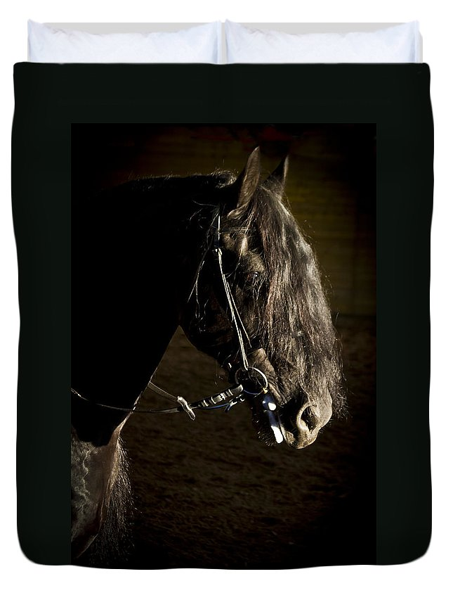 Ebony Duvet Cover featuring the photograph Ebony Beauty by Wes and Dotty Weber