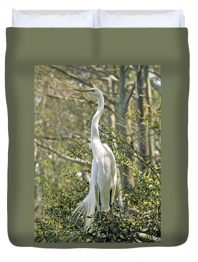 Egret Duvet Cover featuring the photograph Egret 1 by Michael Peychich