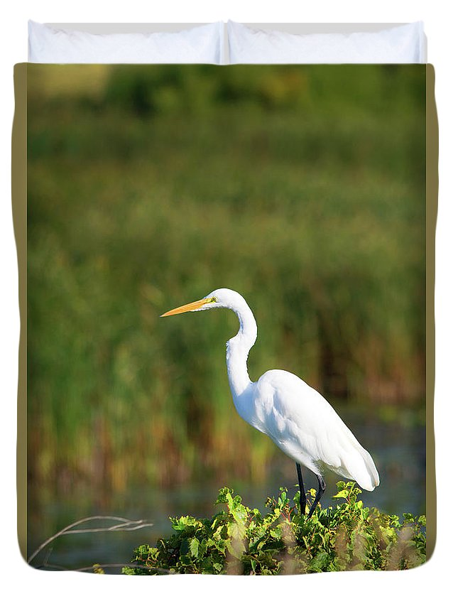 Great White Egret Duvet Cover featuring the photograph Egret At The River by Linda Kerkau