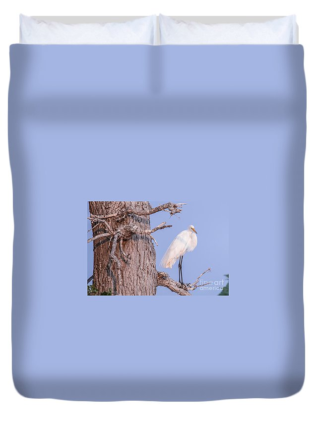 Egret Duvet Cover featuring the photograph Egret In Tree by Nikki Vig