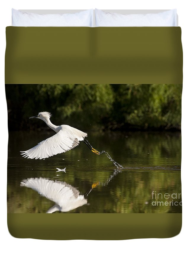Egret Duvet Cover featuring the photograph Egret Splash by Ruth Jolly