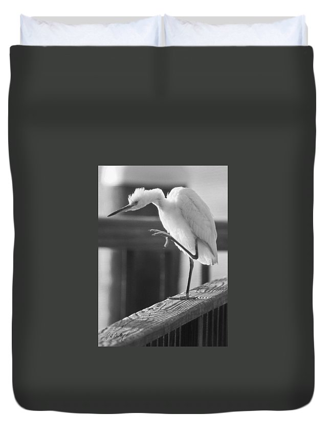 Birds Duvet Cover featuring the photograph Egret Tai Chi by Phill Doherty