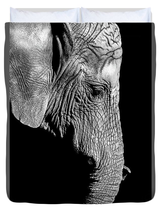 Nature Duvet Cover featuring the photograph Elegant Elephant by Matthew Alberts