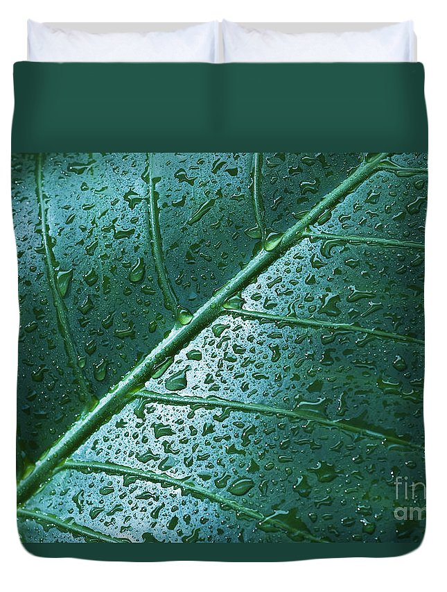 Abstract Duvet Cover featuring the photograph Elephant Ear Leaf by Dana Edmunds - Printscapes