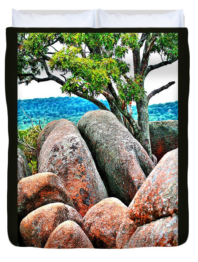 Large Duvet Cover featuring the photograph Elephant Rocks And Tree by Larry Jost