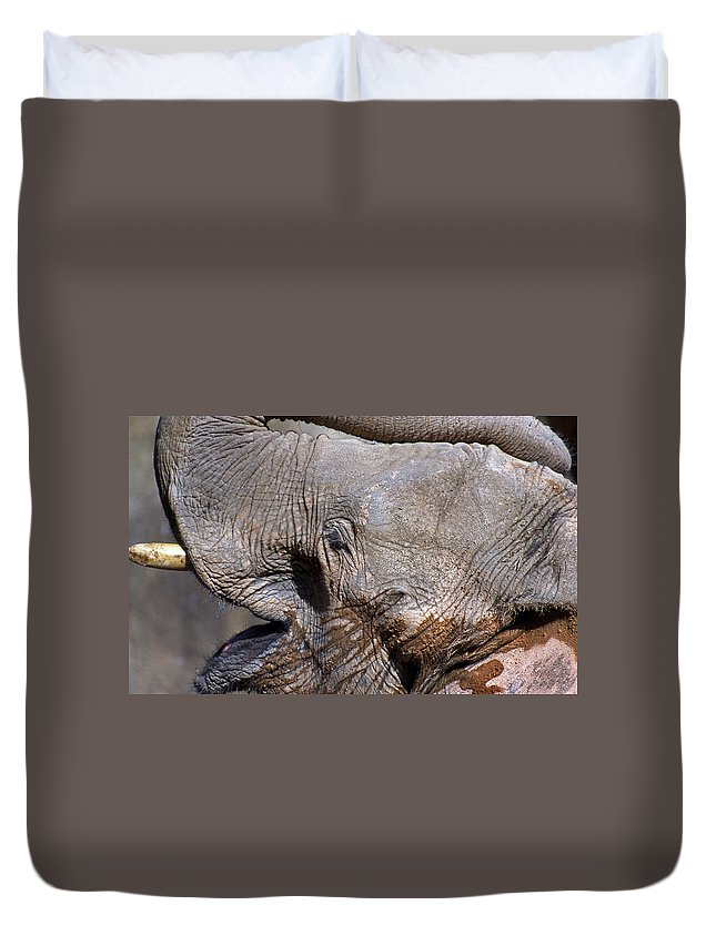 Elephant Duvet Cover featuring the photograph Elephant Smile by Skip Willits