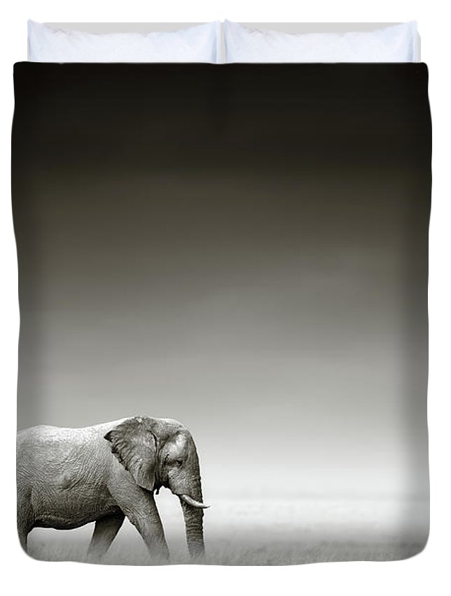 African Elephant Duvet Covers