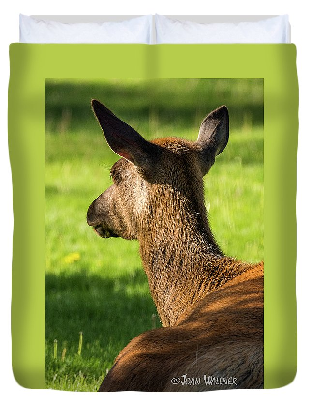 Elk Duvet Cover featuring the photograph Elk Profile by Joan Wallner