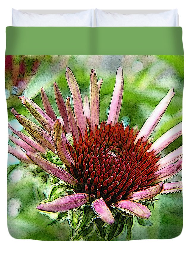Coneflower Duvet Cover featuring the photograph Emerging Coneflower by Dee Flouton