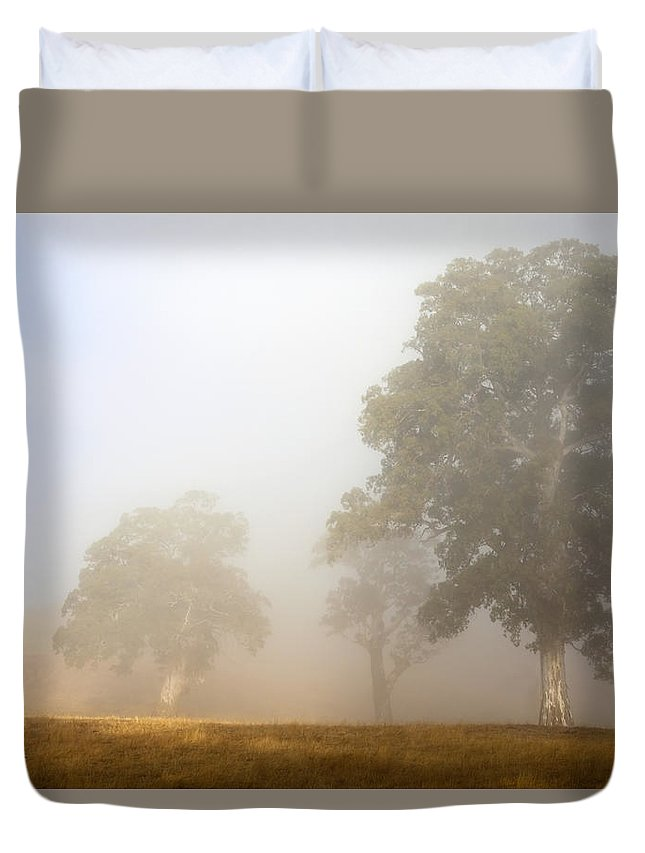Gum Tree Duvet Cover featuring the photograph Emerging From The Fog by Mike Dawson