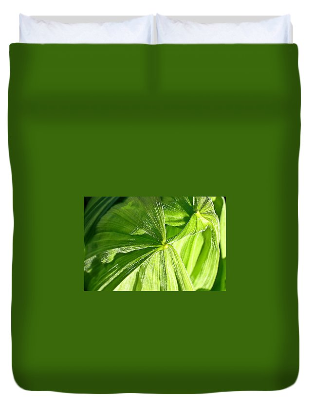 Plant Duvet Cover featuring the photograph Emerging Plants by Douglas Barnett