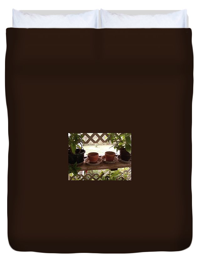Plants Pots Latice Aluminum Pans Greenery Duvet Cover featuring the photograph Empty Pots by Cindy New