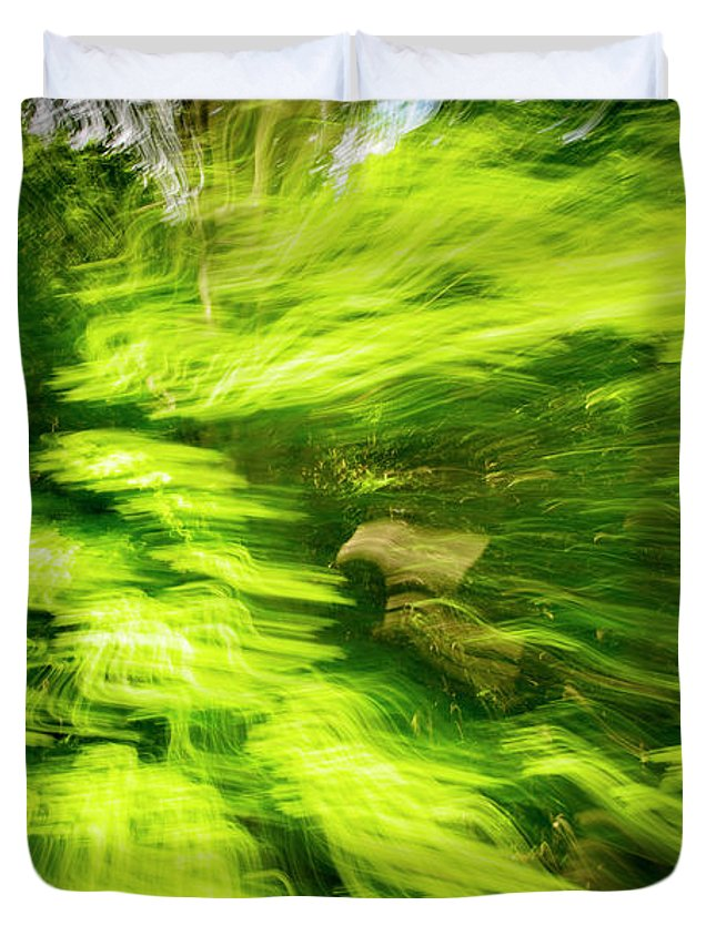 Photography Duvet Cover featuring the photograph Enchanted Forest 6 by Frederic A Reinecke