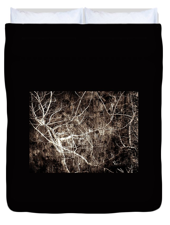 Tree Duvet Cover featuring the photograph Endless by Gaby Swanson