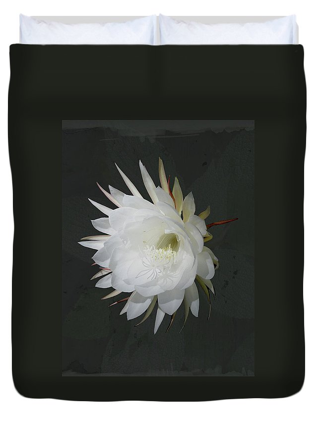Flower Duvet Cover featuring the photograph Epiphyte Blossom - Epiphyllum Oxypetalum by Mother Nature