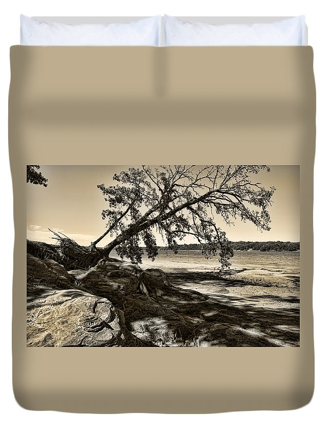 Tree Duvet Cover featuring the photograph Erosion - Anselized by Ricky Barnard