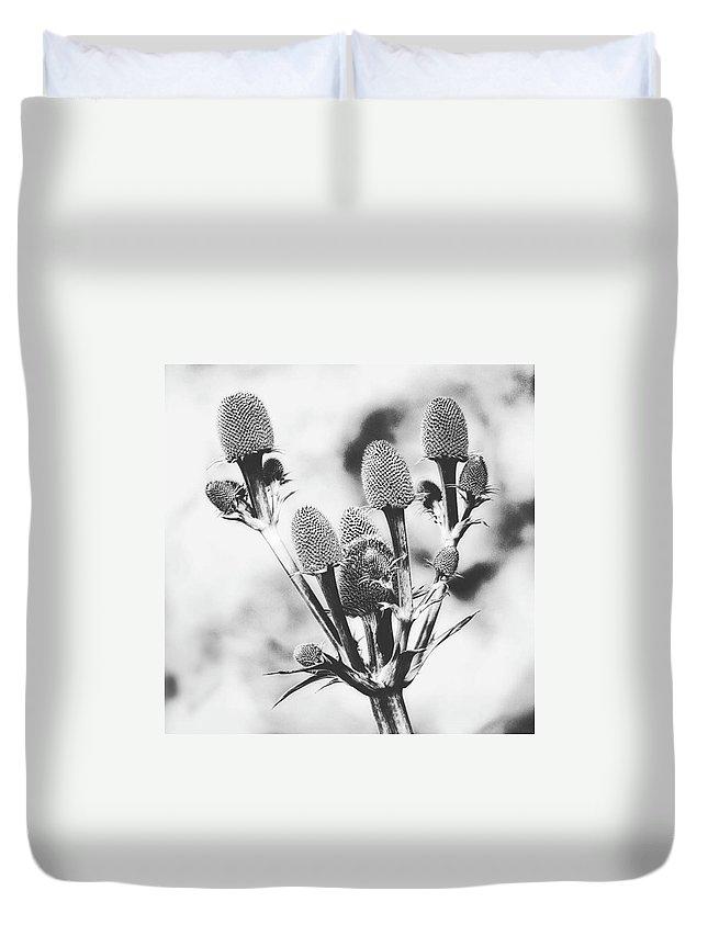 Beautiful Duvet Cover featuring the photograph Eryngium #flower #flowers by John Edwards