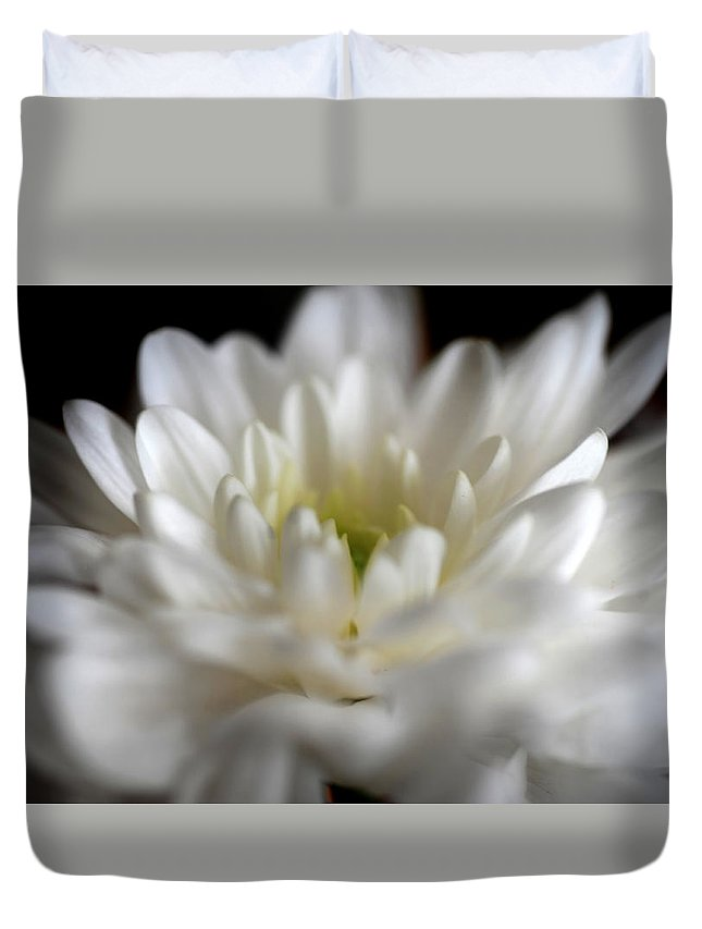 Chrysanthemum Duvet Cover featuring the photograph Essential Lightness Of Being by Jenny Rainbow