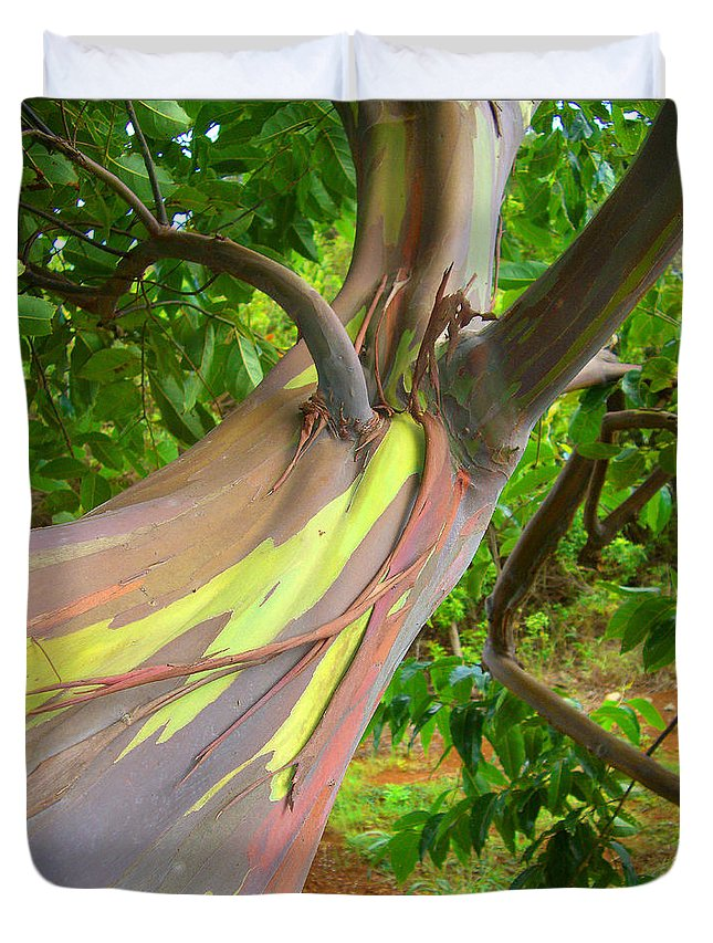 Background Duvet Cover featuring the photograph Eucalyptus Tree by Ron Dahlquist - Printscapes