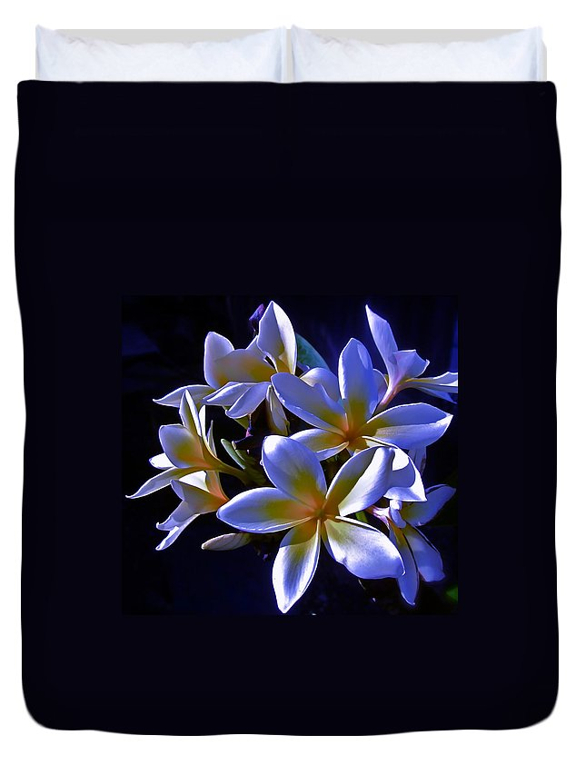 Photograph Of Flower Duvet Cover featuring the photograph Evening Glow by Gwyn Newcombe