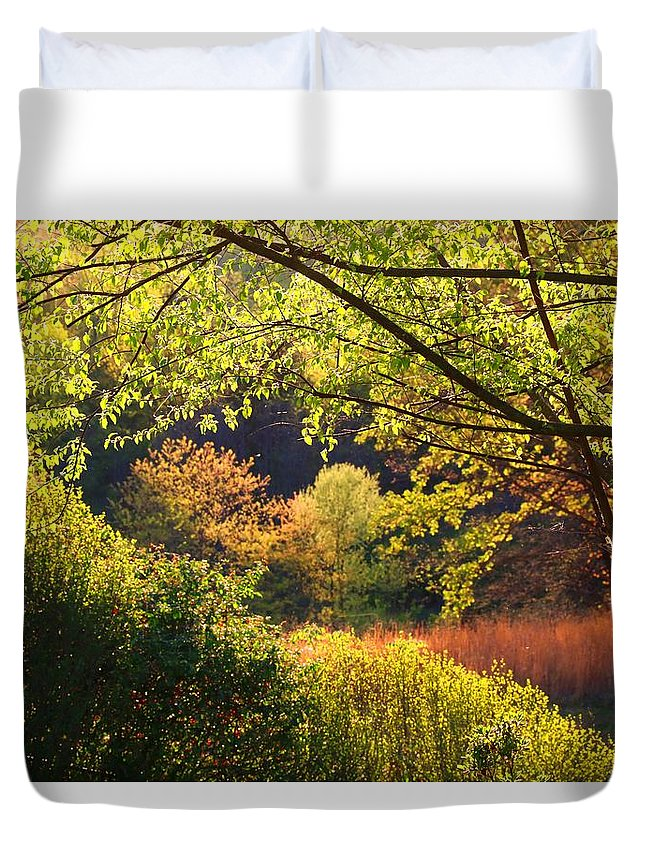 Evening Light Duvet Cover featuring the photograph Evening Light 1 by Kathryn Meyer