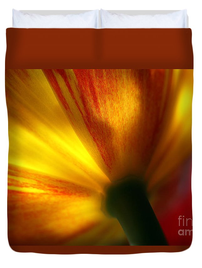 Spring Duvet Cover featuring the photograph Eventually by Amanda Barcon