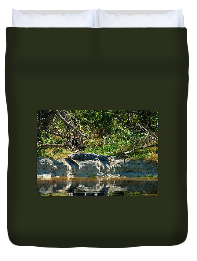 Everglades National Park Duvet Cover featuring the photograph Everglades Crocodile by David Lee Thompson