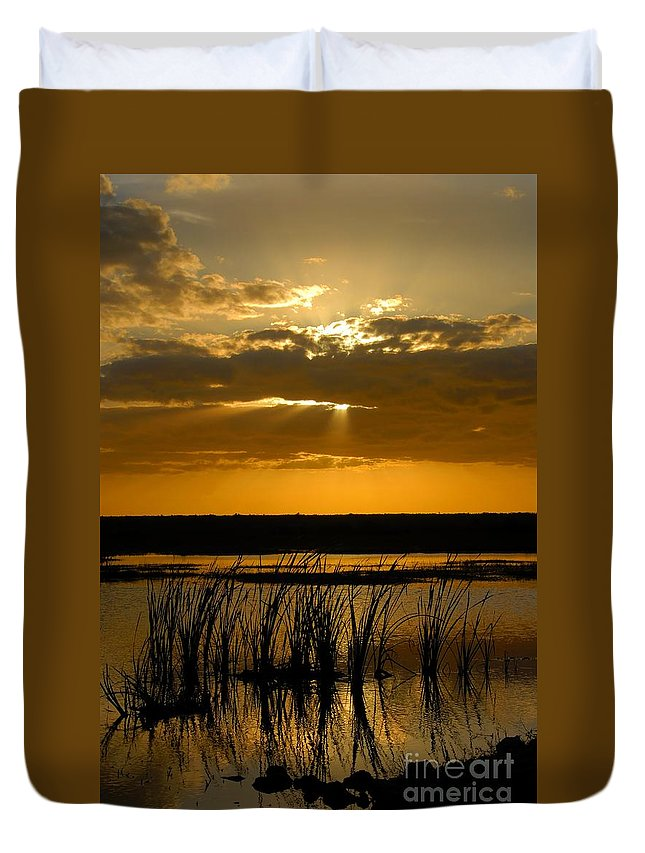 Everglades National Park Florida Duvet Cover featuring the photograph Everglades Evening by David Lee Thompson
