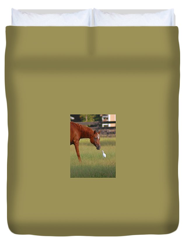 Horse Duvet Cover featuring the photograph Excuse Me by Donna Bentley