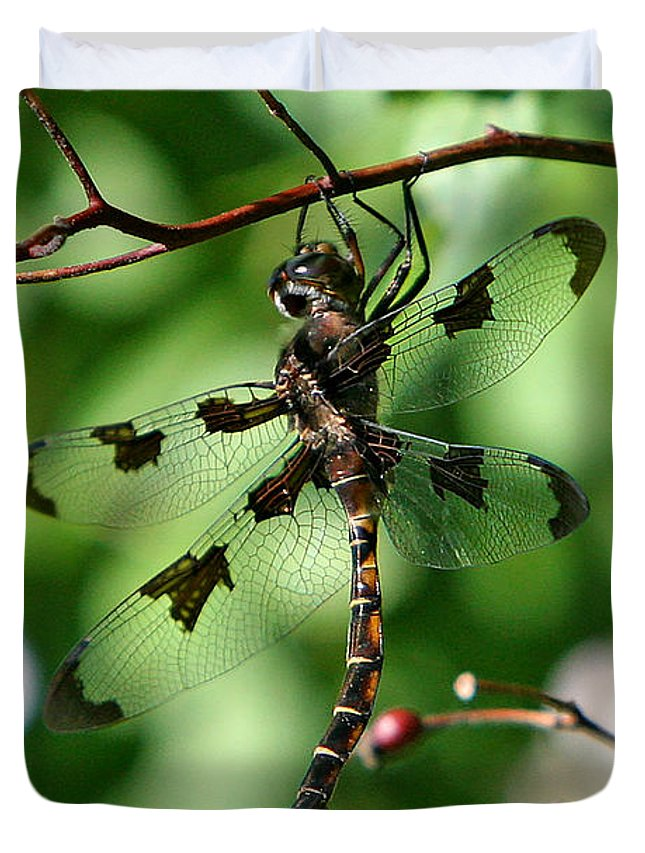 Dragonfly Duvet Cover featuring the photograph Exercise by Marle Nopardi