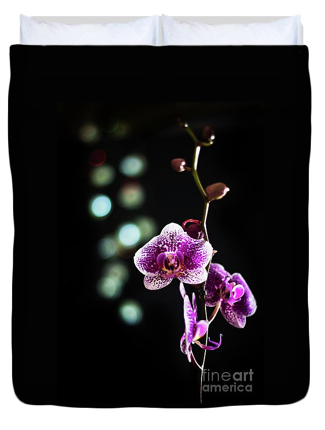 Exotic Orchid Duvet Cover featuring the photograph Exotic Orchid 2 by Alex Art and Photo