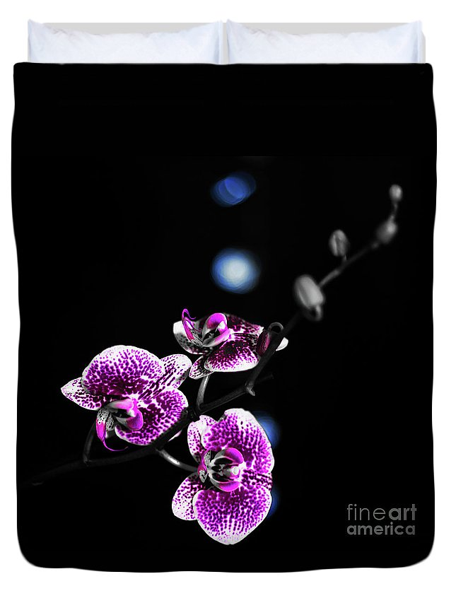 Exotic Orchid Duvet Cover featuring the photograph Exotic Orchid 6 V2 by Alex Art and Photo