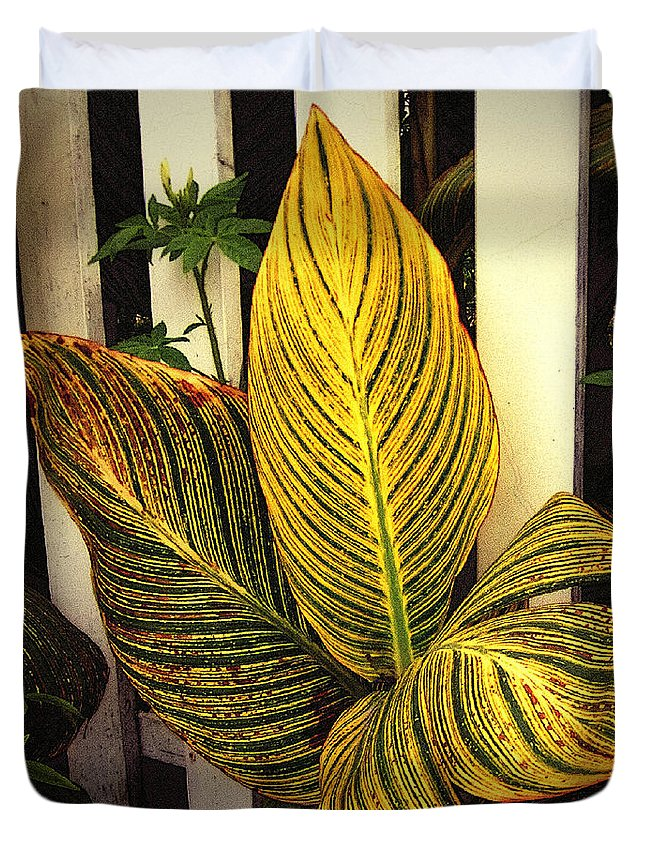Autumn Duvet Cover featuring the painting Exotica Nova Angliae by RC deWinter