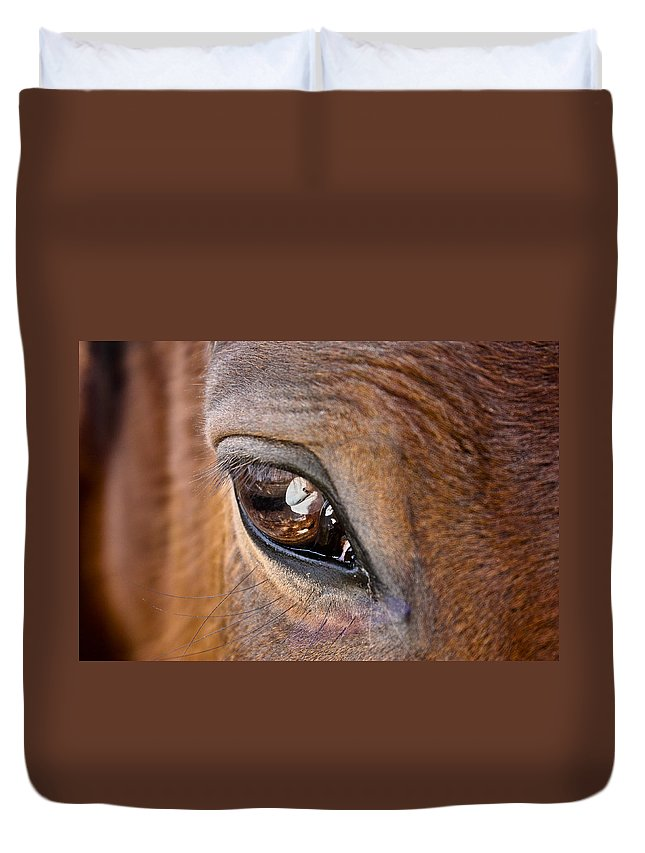 Horse Duvet Cover featuring the photograph Eye See You Too by Hannah Breidenbach