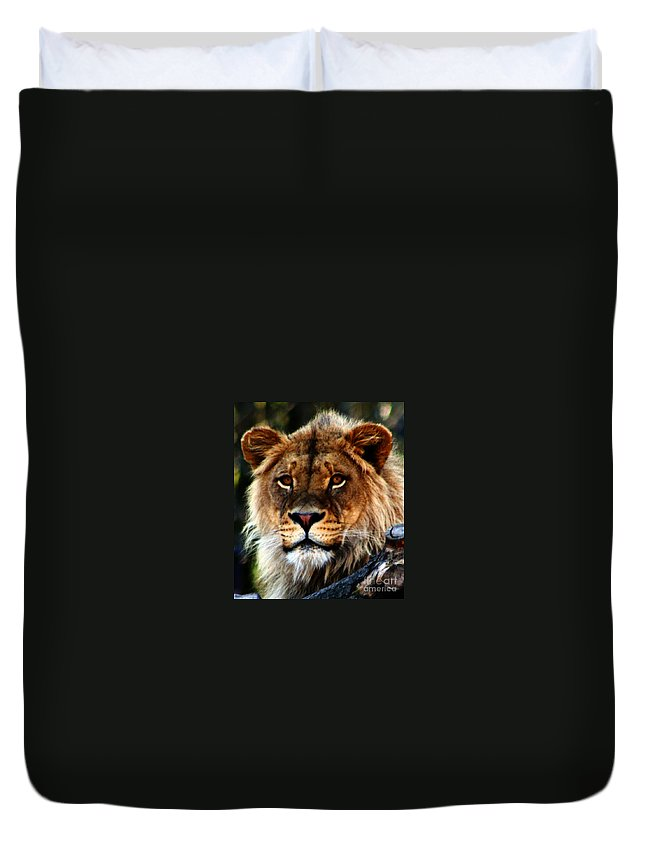 Lion Duvet Cover featuring the photograph Eyes Of The Young King by Nick Gustafson